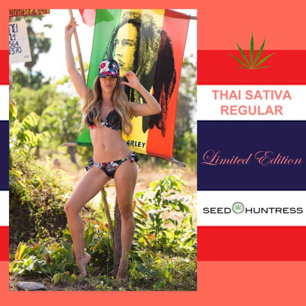 Thai Sativa * Limited Edition * 6 x regular